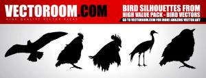 vectoroom.com - bird vectors by rembrandt83