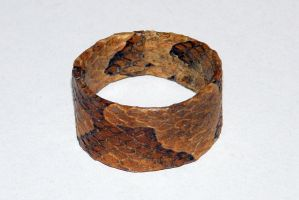 Copperhead Ring by redtailhawker