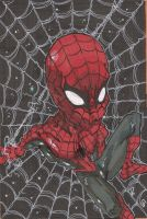 SPIDERMAN by leagueof1