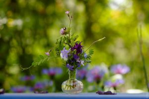 Summer by MDelicata