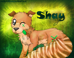 .*Shay*. by AgraelLPS