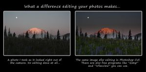 On the eighth day, God created Photoshop! by metacom