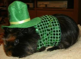 Saint Patrick's Day Outfit by MadForHatters