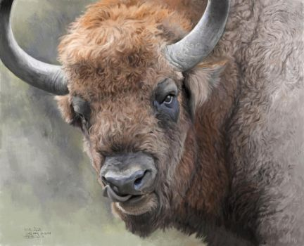Ice Age steppe bison by Renum63