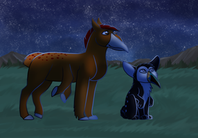 HHG || Wish Upon A Star by SapphireSquire