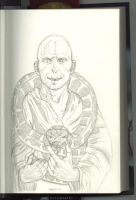 HP7 Voldemort and Nagini by MasterofDisaster88
