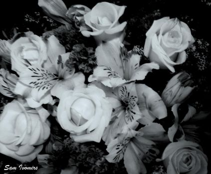 Bouquet with Black and White by samion