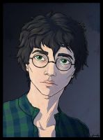 My version of Harry Potter by searoth