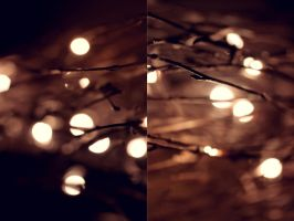 Lights by PhotographerTamara