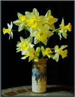 First Daffodil Dance 2010... by LadyAliceofOz