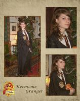 Hermione by Calliope-MoEP
