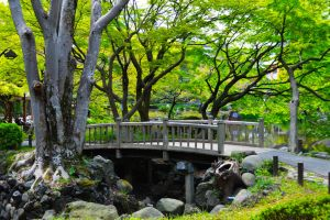 Hibiya Bridge by Nature-And-Things