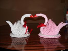 Swans by Windemo
