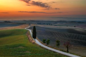 Tuscany Way by JPawlak