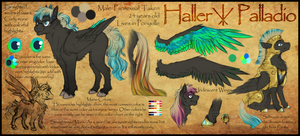 Haller -Reference Sheet- by ElectricSilence