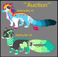 Wuzzle Auction III [closed] by opadopts