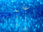 To look up to you by Bimmi1111