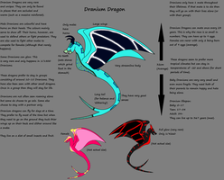 Dranium Dragon Ref Sheet by starscreamfan10100