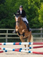 Horse jumping by Gladhnes