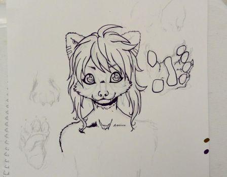 Red Panda Fursona WIP by kole