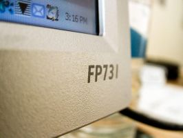 FP731 by budianto