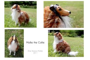 Mollie the Collie Doll by MiiruFae