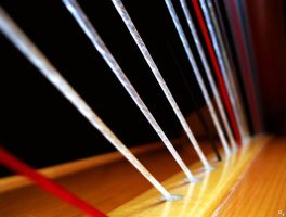Harp Strings by OneofakindKnight