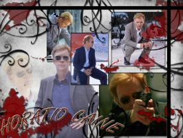 Horatio Caine by Jaina9