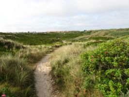 Sylt 07-21-2013_014 by Travail-de-lame