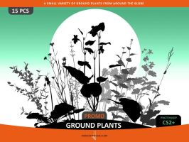 Ground Plants Brushes by Horhew