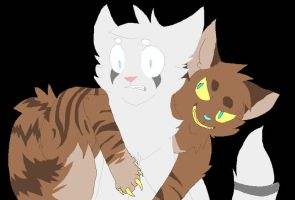 Hawkfrost: Attack him by Blinded-By-Stones