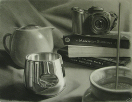 Charcoal Still Life by gummycow