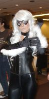 Black Cat Jessica Nigri 2 by norrit07