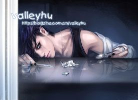 (2013.09.04) by valleyhu