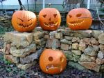 Jack O' Lanterns 2013 by StutleyConstable