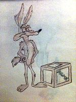 Wiley Coyote by NegaDuck13