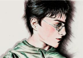 Harry Potter by thegreatperhapss