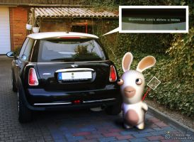 Bunnies can't drive a MINI by cybiegraphy
