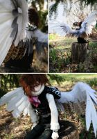 Custom Wings: Browning Seagull by IcarusLoveMedley