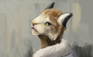 Khajiit sketch by R-r-ricko