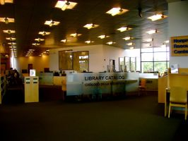 Library floor 3.9 by Ninde