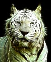 White fractal tiger by coffeecookiecat