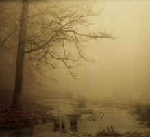 Haunted pond II by Northstar76