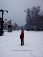 Snow Red by natsumi33