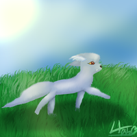 Naikendan out for a walk and speedpaint by pokebulba