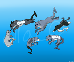 My Mer Wolf Family by dracocrowshiin