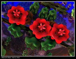 Red Roses for a Blue Lady by mario837