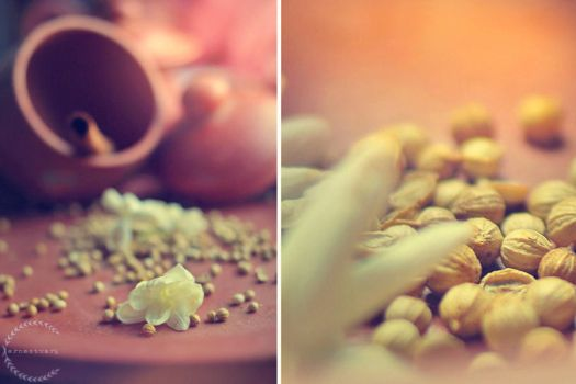 spices 2 by ernest-art