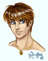 Westley - New Portrait by evafortuna