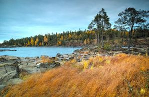 Autumn and Sigma Dp0 Quattro..Valaam Islands  _55_ by my-shots